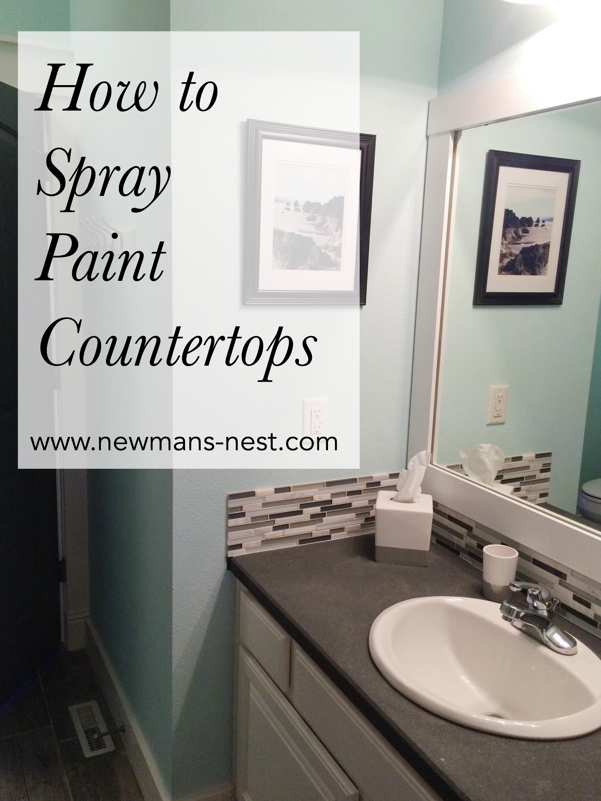 Spray Painted Countertops Newmans Nest - Can you paint a bathroom sink